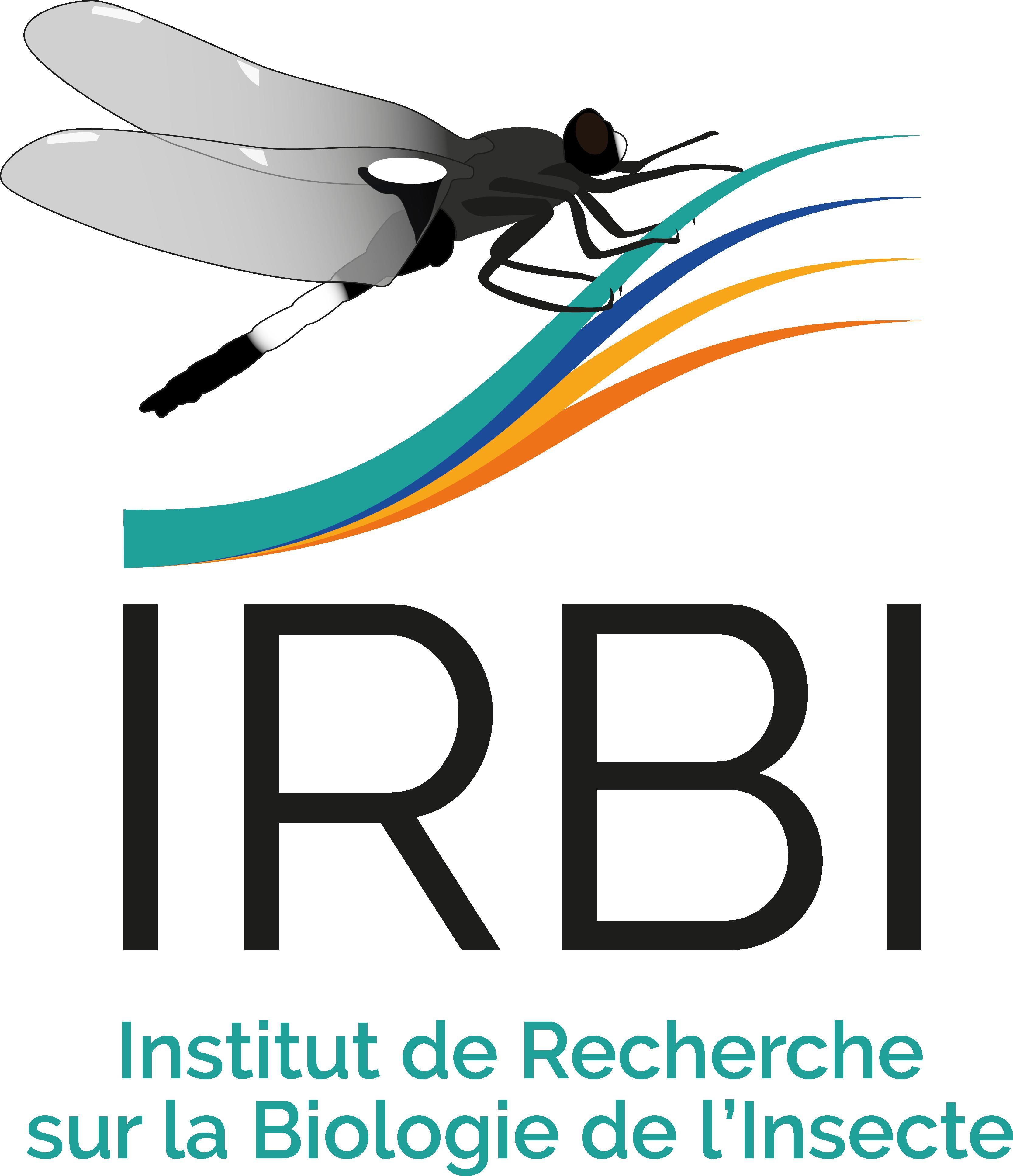 Logo_IRBI